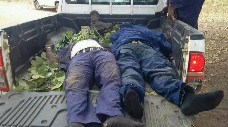 Suspected herdsmen murder two NSCDC officials in Benue